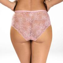 sexy-shher-lace-full-brief-panty-pink-lingerie-back-view_2000x